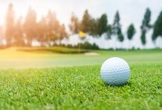 Golfboll på golfbana royaltyfria bilder