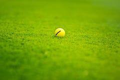 Golfboll på golfbanan Royaltyfria Bilder