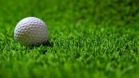 Golfboll på gräs royaltyfria bilder
