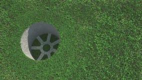 Golfboll på gräset