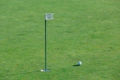 Golfboll på gräsplan Arkivbild