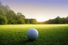 Golfboll på gräsplan i härlig golfbana på solnedgångbakgrund arkivbild