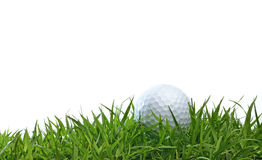 Golfboll på grönt gräs Arkivbilder
