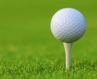 Golfboll på grönt gräs Arkivfoto