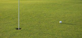 Golfboll på greenen Royaltyfri Fotografi