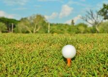 Golfboll på orange utslagsplats i härligt grönt gräs arkivfoton