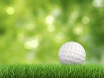 Golfboll på sidosikt för grönt gräs Royaltyfria Foton