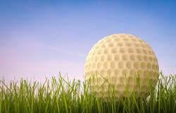 Golfboll på sidosikt för grönt gräs Arkivbild