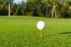 Golfboll på utslagsplats på golfbana över ett suddigt grönt fält arkivbilder