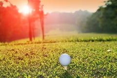 Golfboll på utslagsplats i aftongolfbanan med solsken royaltyfria bilder