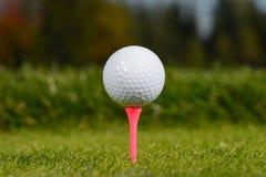 Golfboll Royaltyfri Foto