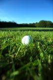 Golfboll på våt frodig farled Arkivbild