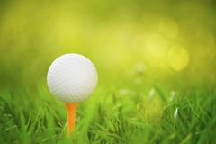 Golfboll p? utslagsplats i en h?rlig golfbana med morgonsolsken royaltyfri fotografi