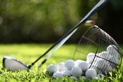 Golfbollar i korg och golfklubbar på grönt gräs för övning royaltyfri fotografi