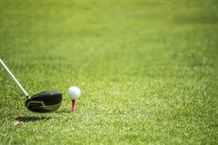 Golfbollar och chaufför på grönt gräs Royaltyfria Foton