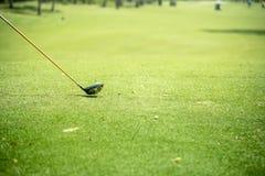 Golfbollar och chaufför på grönt gräs Fotografering för Bildbyråer