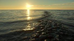 Golfbreker in het Wadden Overzees bij zonsondergang stock video