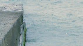 Golfbreker op de overzeese kust stock footage
