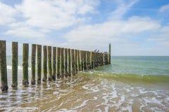 Golfbreker op een recreatief strand in de lente die land beschermen tegen overzees royalty-vrije stock afbeelding