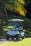 Golfcart. In the field Royalty Free Stock Image