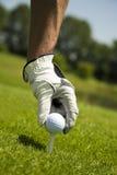 Golfclub Stockfotografie