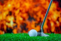 Golfclub en golfbal op gras stock fotografie