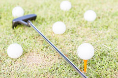 golfclub and golfball on grass. Stock Images