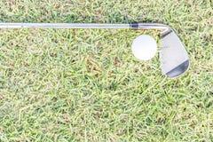 golfclub och golfball på gräs Arkivbild