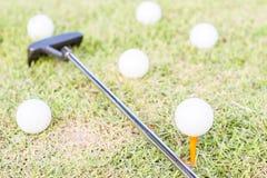 golfclub och golfball på gräs Arkivbilder