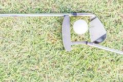golfclub och golfball på gräs Royaltyfria Foton