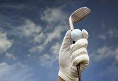Golfclub tegen een blauwe hemel Royalty-vrije Stock Fotografie