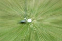 Golfclub und Kugel Stockbilder