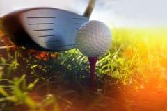 Golfclub und Kugel im Gras Lizenzfreies Stockbild