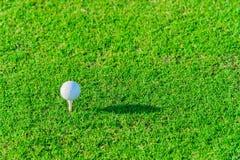Golfclub und Kugel im Gras Stockfoto