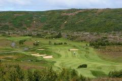 golfcourse σχεδιάγραμμα Στοκ εικόνες με δικαίωμα ελεύθερης χρήσης