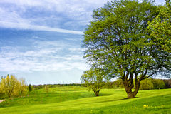 Golfcourse Στοκ εικόνα με δικαίωμα ελεύθερης χρήσης