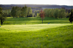 Golfcourse Στοκ φωτογραφίες με δικαίωμα ελεύθερης χρήσης