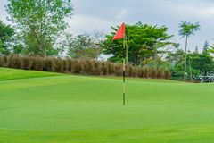 Free Golfcourse, Beautiful Landscape Of A Golf Court With Trees And Green Grass Royalty Free Stock Image - 156853736