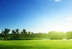 Golfcursus Stock Foto