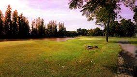 Golfcursus in avond stock afbeelding