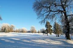 Golfcursus in Bellshill, Lanarkshire in de winter Royalty-vrije Stock Fotografie