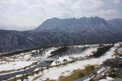 Golfcursus in de Winter Royalty-vrije Stock Afbeelding