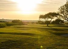 Golfcursus in zonsondergang Royalty-vrije Stock Foto