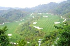 Golfcursussen, en het groene gras Stock Foto