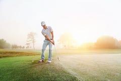Golfe do tiro de microplaqueta Imagens de Stock Royalty Free