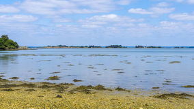 Golfe du Morbihan France Stock Photo