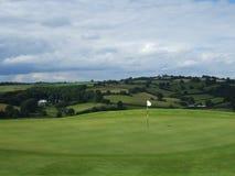 Golfe no campo Imagem de Stock