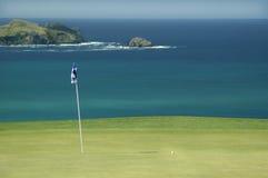 Golfe - verde Foto de Stock Royalty Free