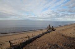 Golfen av Riga Arkivfoto