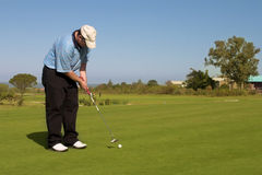 Golfer. Putting on the green. Golf and ball in motion. Copy space Royalty Free Stock Image